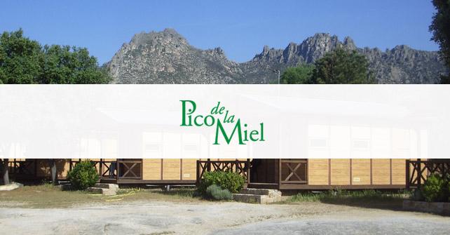 Nueva página Web Camping Pico de la Miel