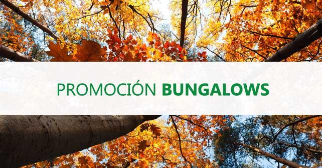 Promoción Bungalow Otoño / Invierno 18-19